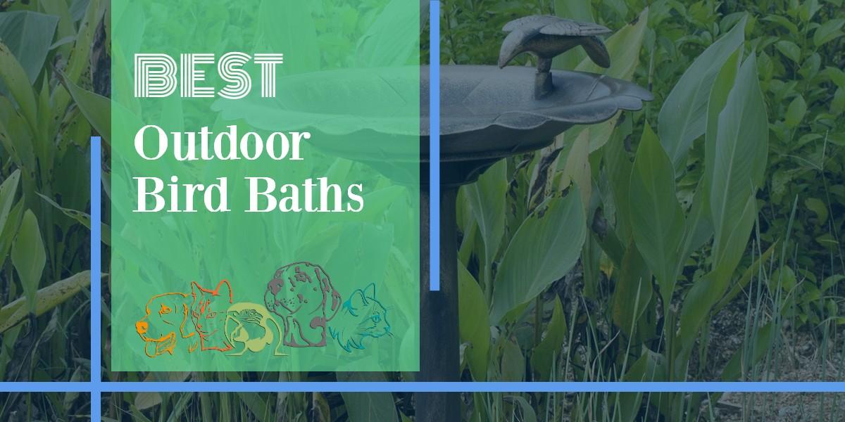 Outdoor Bird Baths