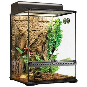Exo Terra Mayan Glass Terrarium