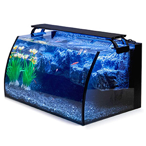 Hygger Horizon Fish Tank