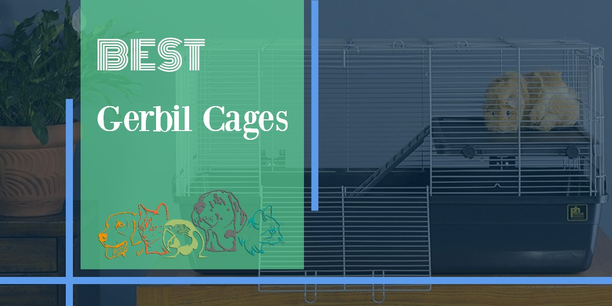 Gerbil Cages