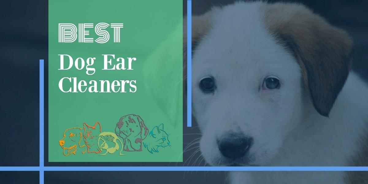 Dog Ear Cleaners
