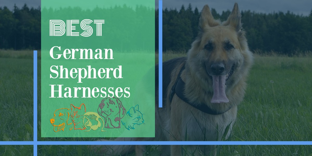German Shepherd Harnesses